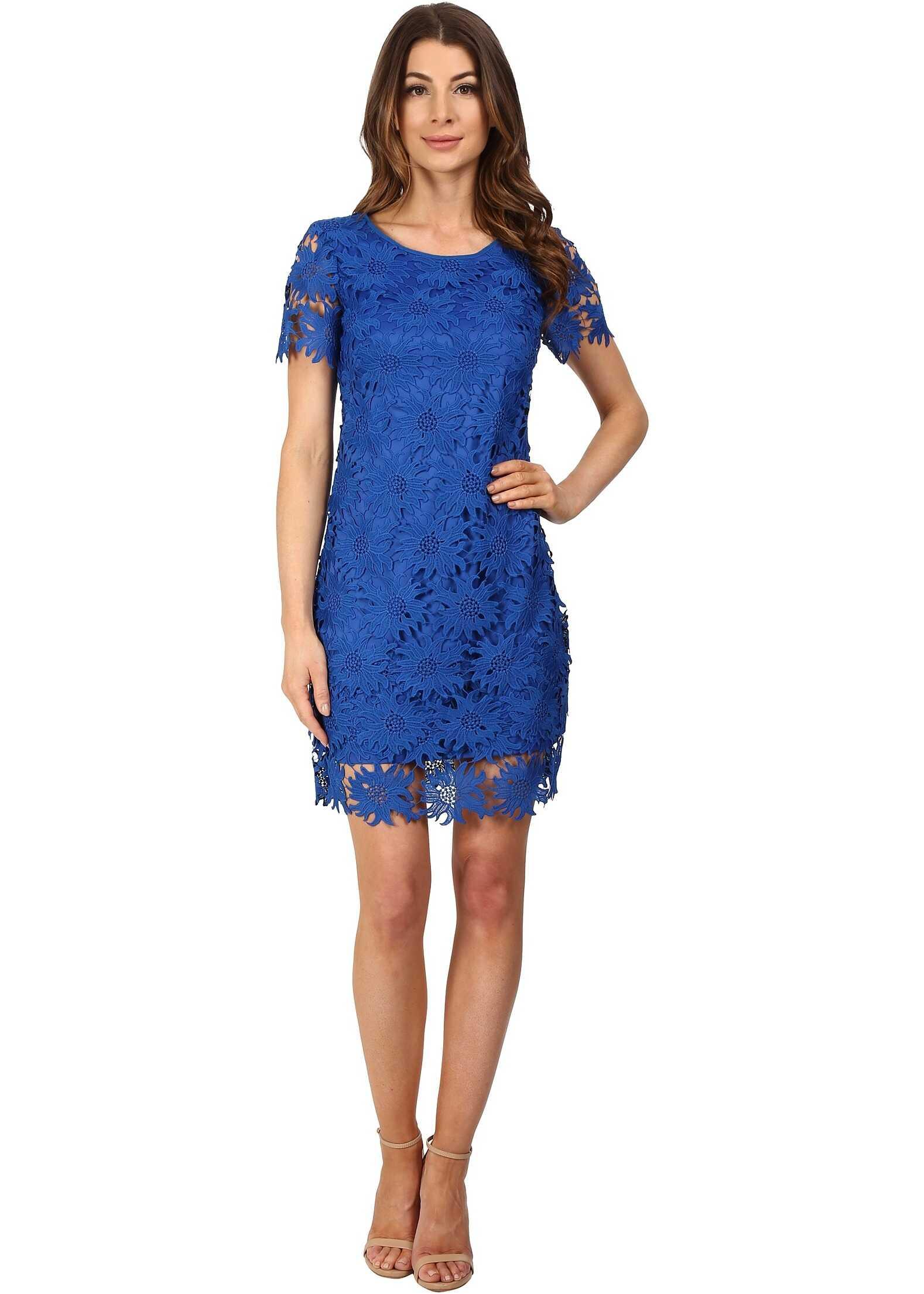 Adrianna Papell Scalloped Lace Flounce Hem Dress Royal