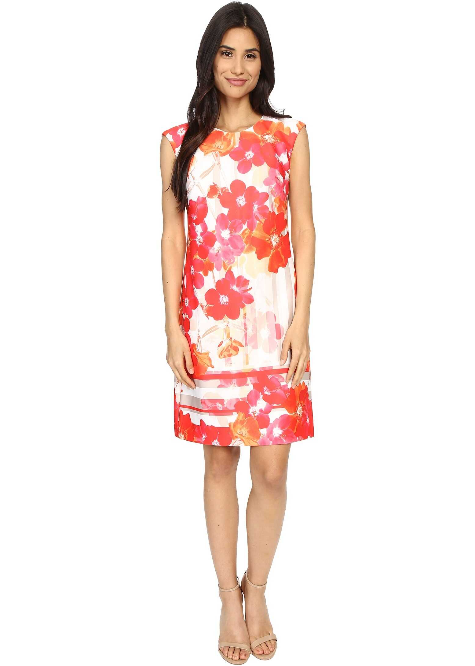 Vince Camuto Printed Scuba Extended Cap Sleeve Shift Dress Pink Multi
