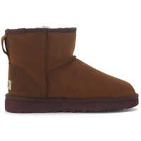 Ghete & Cizme Classic Ii Mini Ankle Boots In Dark Brown Suede Femei