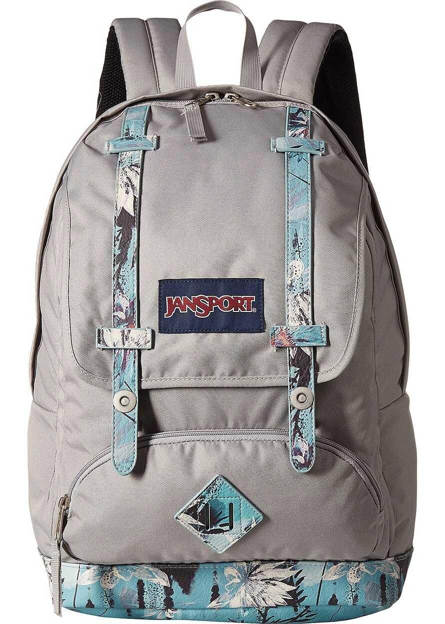 JanSport Cortlandt Backpack Springing Garden