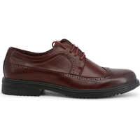 Pantofi Richard Barbati