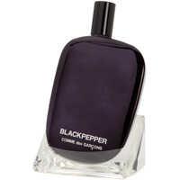 Parfumuri Eau De Parfum Comme Des Garçons Black Pepper 100 Ml Barbati