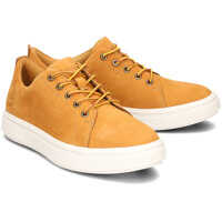 Sneakers Timberland Londyn Simple Oxford Wheat