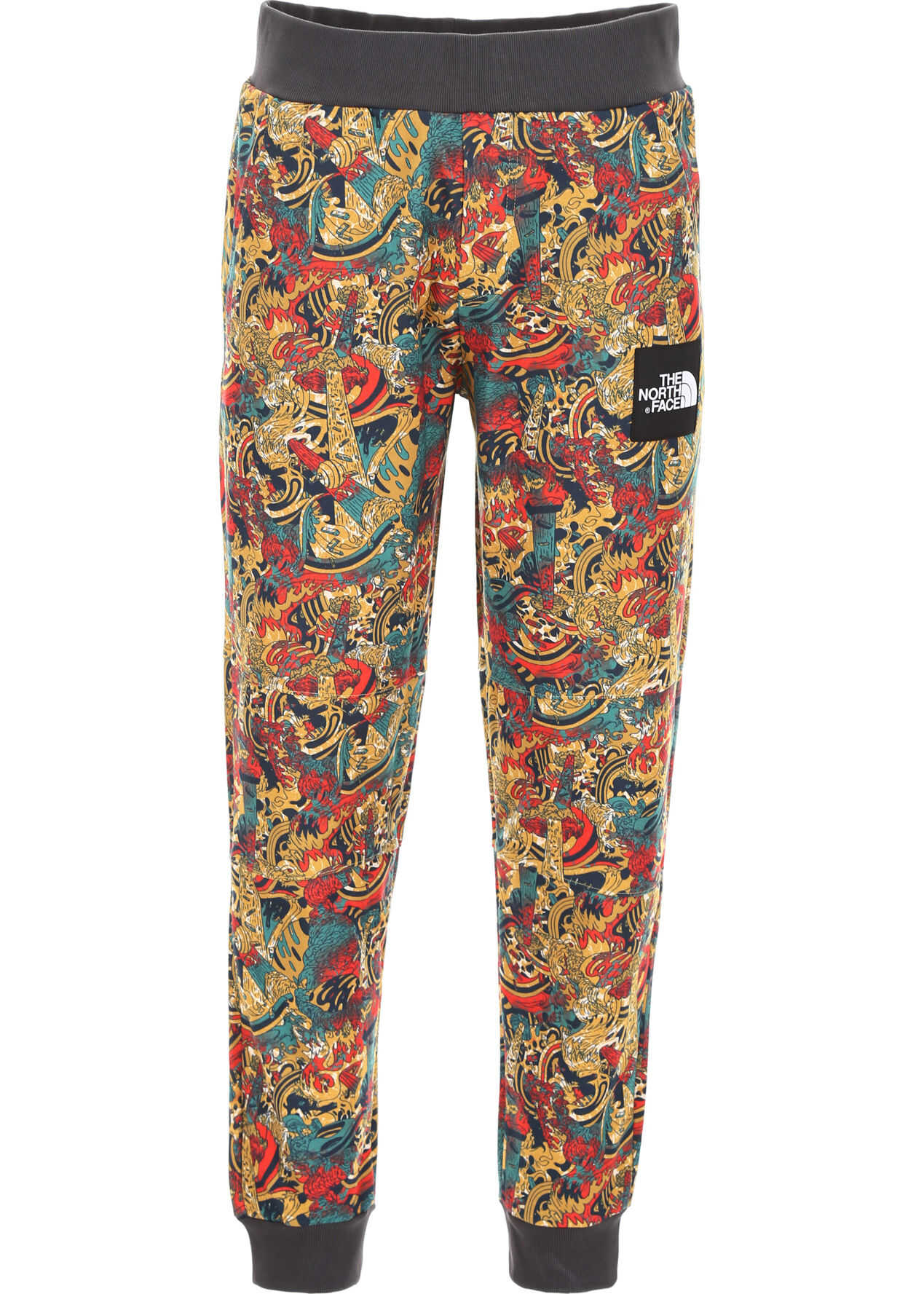 The North Face Expedition Africa Joggers LEOPRDYWG