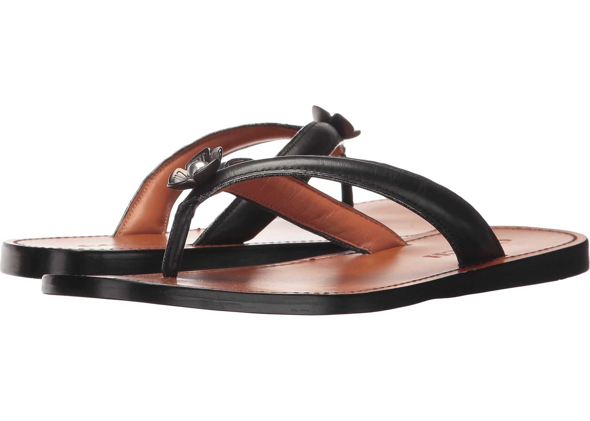 COACH Tea Rose Flip-Flop Black