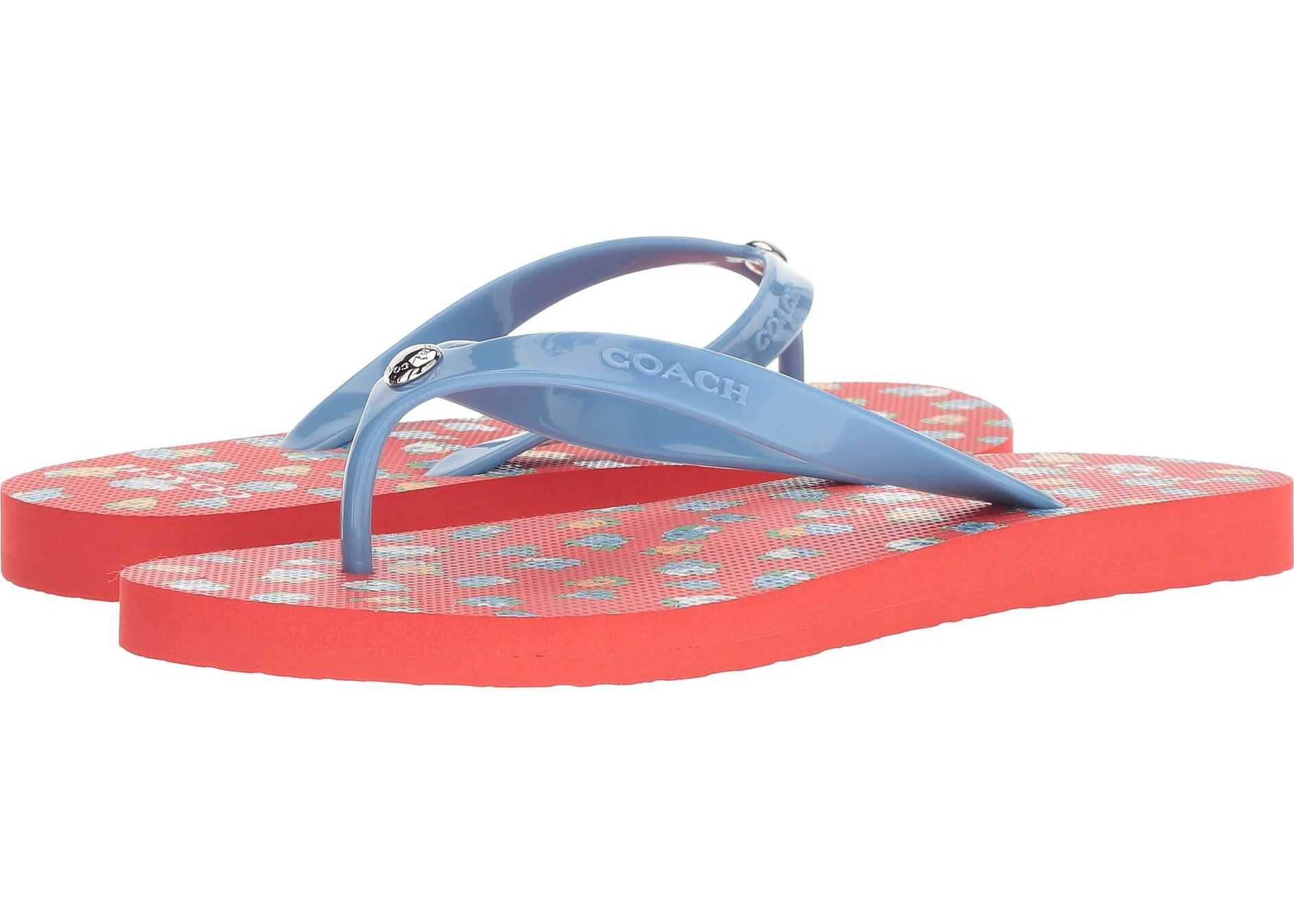 COACH Flip-Flop Red Multi Floral Rubber