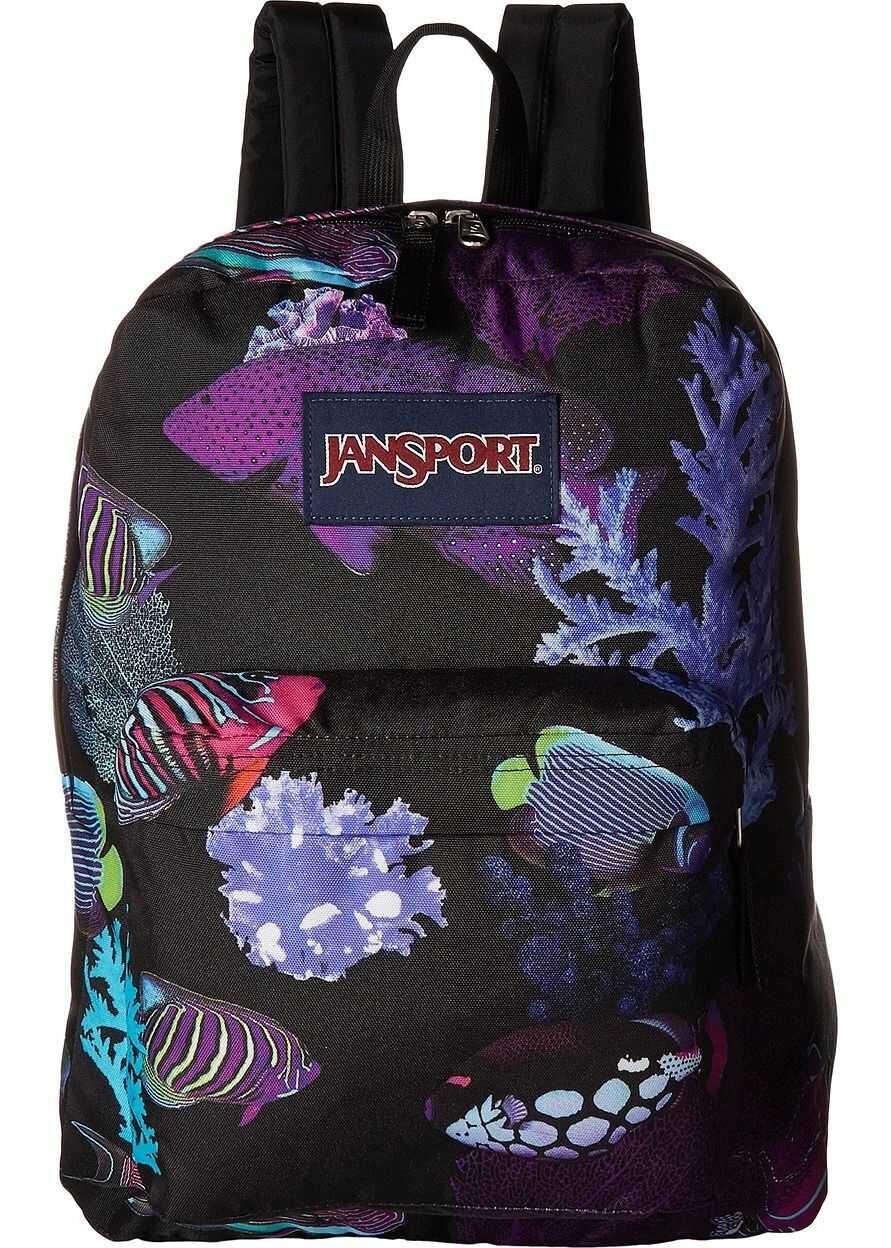 JanSport High Stakes Aquarium