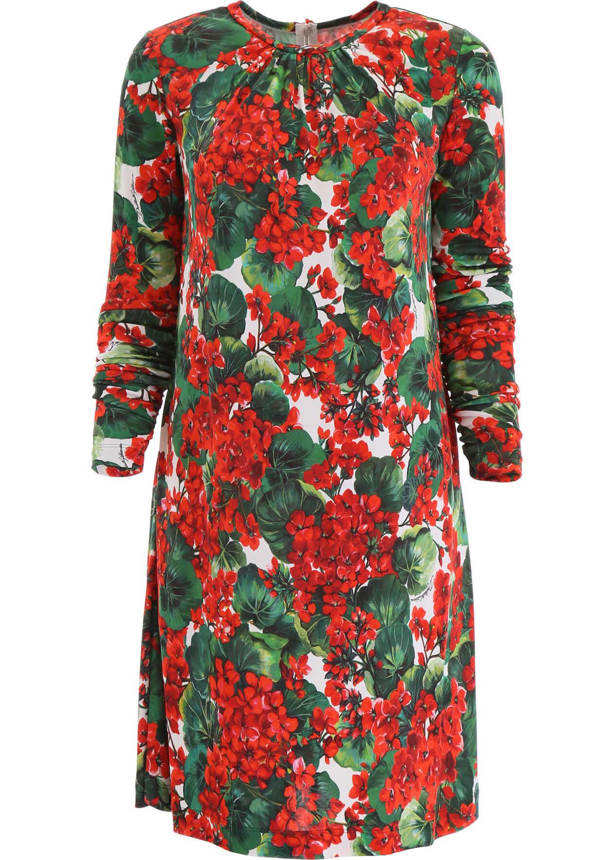 Dolce & Gabbana Portofino Print Dress GERANI FDO BCO NAT