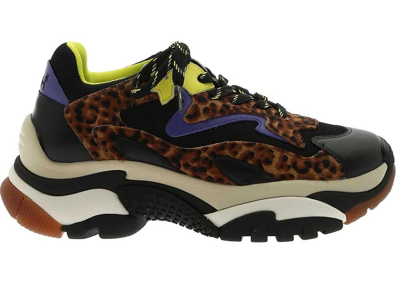 ASH Addict Sneakers Animal Print Black
