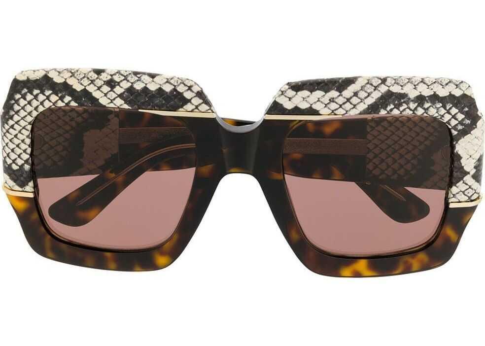 Gucci Acetate Sunglasses BROWN