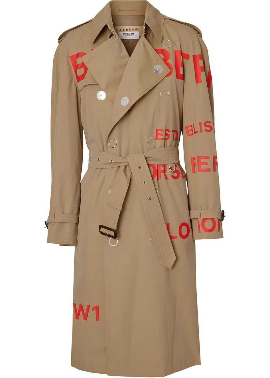 Cotton Trench Coat thumbnail