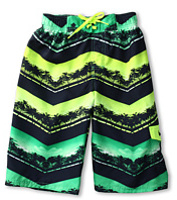 Costume de baie Chevron Palm Volley Short (Big Kids) Baieti